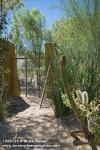 1208129 Gravel path & window gate in desert garden. Alan Richards, Tucson, AZ. © Mark Turner