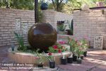 1208597 Propane tank fountain w/ Adeniums in containers [Adenium hyb.]. Plants for the Southwest Nursery, Tucson, AZ. © Mark Tur